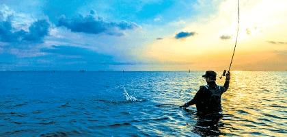 Resultado de imagem para fishing